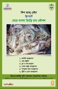 Flipchart Shrimp